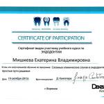 Сертификат_гор_Мишиева5