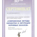 Сертификат_верт_Мишиева3